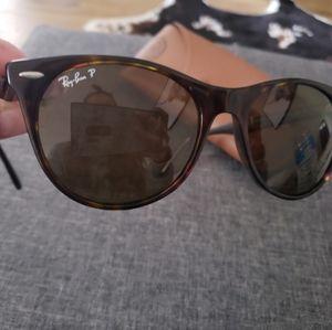 Wayfarer Evolve II Sunglasses